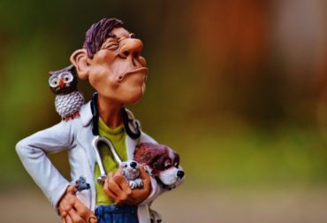 funny-figurine-of-male-vet-with-hand-on-hip-holding-animals